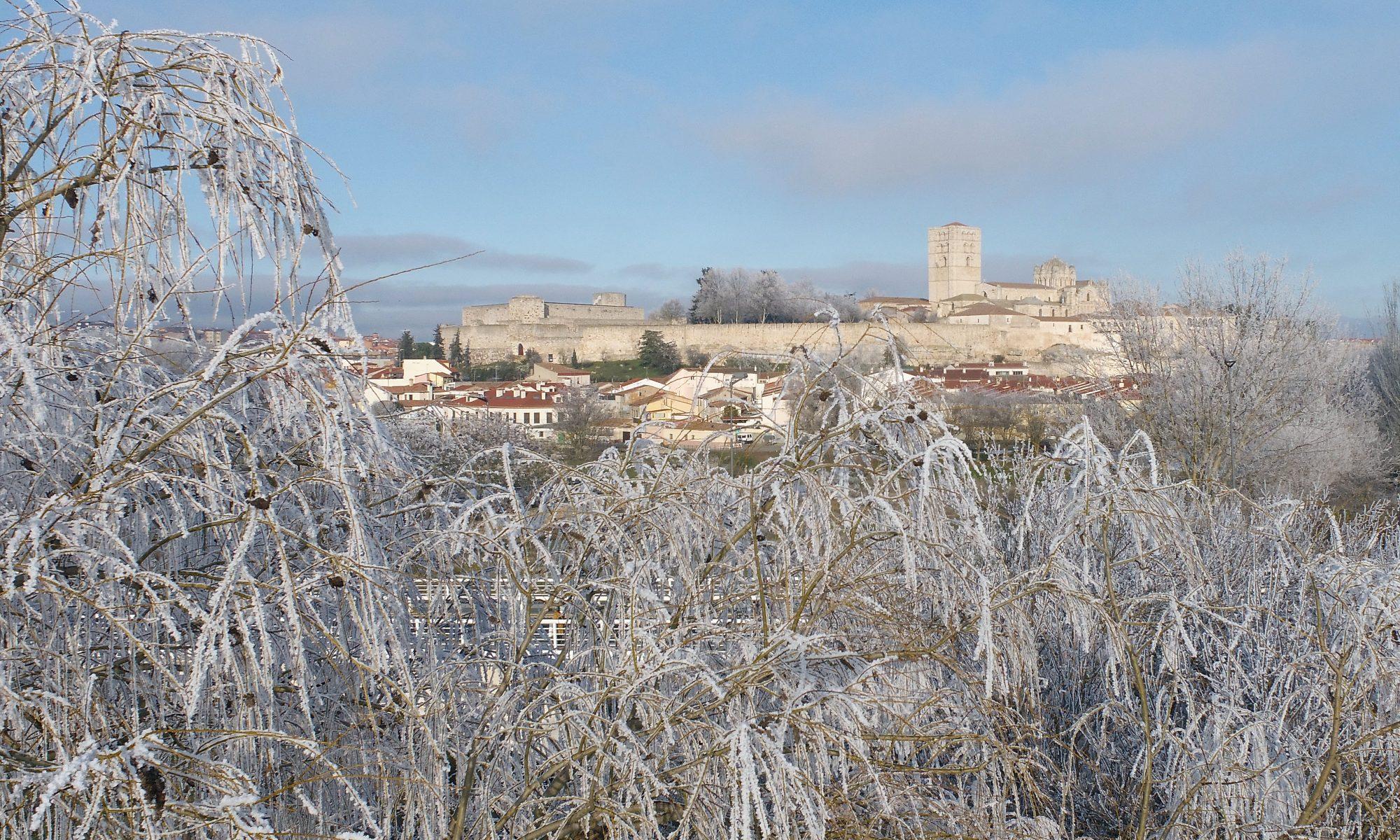 Cencellada en Zamora con Castillo y Catedral al fondo